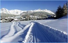 Синяя «экстра» мазь для лыж