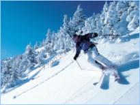 Пропитка для деревянных лыж своими руками